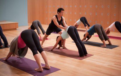 How to lead a life of Yogi